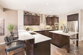 bright marble countertops stand out against dark cabinets in the