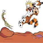 calvin and hobbes birthday card 76 best calvin and hobbes images