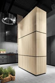 111 best contemporary kitchen design images on pinterest hideaway kitchen without handles natural skin monoliti hideaway kitchen by minacciolo