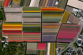 21 satellite photos of earth that will give you a fresh