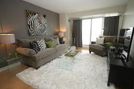 condo living room decorating ideas pictures imanada zebra decor