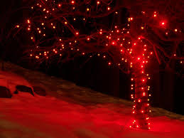 christmas led christmas lights white wire outside outdoor net