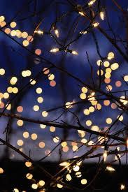google themes lights lights christmas gif tumblr pesquisa google