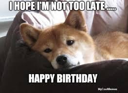 Birthday Meme Dog - funny happy birthday dog meme mycoolmemes