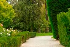 botanical sts st kilda botanical gardens city of port phillip website