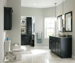 bathroom cabinet color ideas amazing bathroom cabinet color ideas parkapp for bathroom cabinet