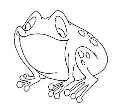 imagenes de un sapo para dibujar faciles dibujo de sapo para colorear dibujos net