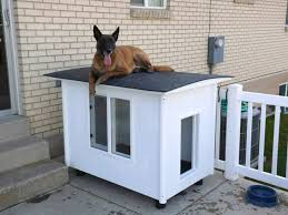 Heated Dog House Plans Fresh Plans for A Dog House Elegant X Dog