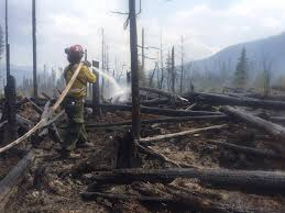Wildfire Test Questions by U S Wildfires Just Set An Amazing And Troubling New Record The