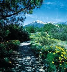 Botanic Garden Santa Barbara Santa Barbara Botanic Garden Santa Barbara Ca California Beaches