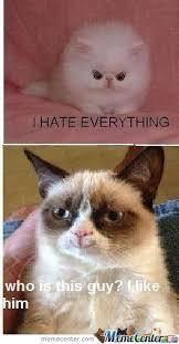 New Grumpy Cat Meme - grumpy cat got a new friend by kostasd3 meme center
