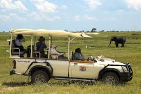 safari jeep drawing malawi landscape exploration adventure tours in malawi