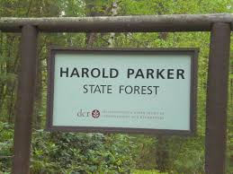 Harold Parker State Forest Map by Breakheart Outdoors Bay Circuit Trail Run Section 3 Single