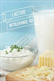 Lactose Intolerance Cottage Cheese by 42 Best Lactose Intolerance Li Images On Pinterest Lactose