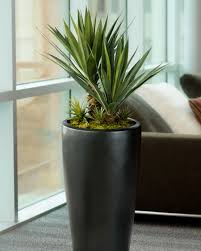 artificial plants distinctive agave americana artificial succulent for business and