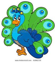 peacock cartoon stock images royalty free images u0026 vectors