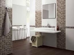 bathroom wall tiles design ideas extraordinary best homey mosaic