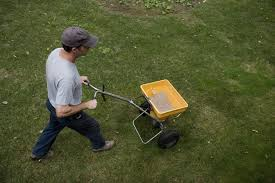do you need to lime the lawn