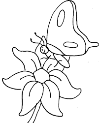 coloring pictures of small butterflies how to draw a butterfly for kids butterflies coloring pages small