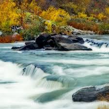 Arkansas Wild Swimming images Lake river parks arkansas state parks jpg