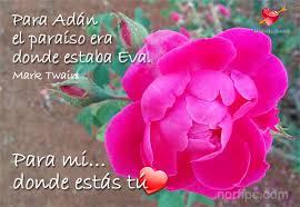 imagenes flores bellisimas bellisimas imagenes de flores con mensajes de amor imagenes de