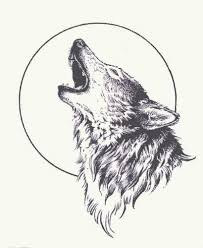grey wolf and moon