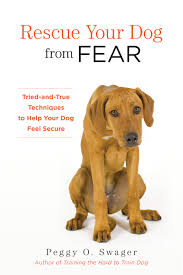 why some dogs may regress with housetraining peggy swager u0027s dog