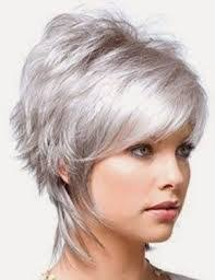 coupe cheveux gris 73 best cheveux gris images on hairstyles dyed hair