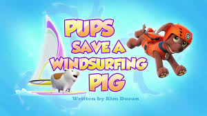 pups save a windsurfing pig paw patrol wiki fandom powered by