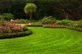 Lawn Landscape by Our Professionals Are Ready With Answers U2014 All Green Lawn Care