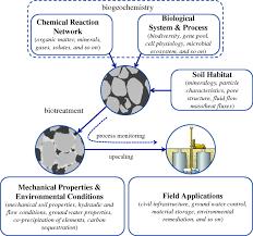 soil engineering in vivo harnessing natural biogeochemical