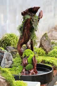 243 best riparium aquascaping home garden images on pinterest