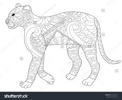 panther coloring book adults vector illustration stock vector