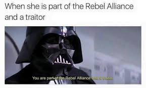Rebel Meme - when she is part of the rebel alliance