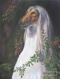 afghan hound jackets hound of the feast artist v tor afghan hound paintings art