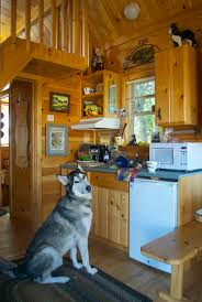 Tinyhousecottages Cozy Cabin Tiny House Vacations 60 Best Tiny Houses 2017 Small