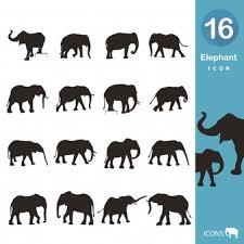 elephant vectors photos psd files free download