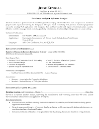 Systems Analyst Resume Sample by Best Simple Educations Plus Credentials For Software And Data