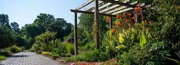Botanical Gardens South Carolina Plant Sale South Carolina Botanical Garden Clemson