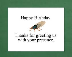 Sarcastic Happy Birthday Wishes Sarcastic Birthday Etsy