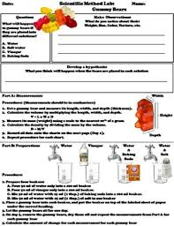 experiment gummy bears lab the scientific method worksheet