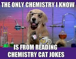 Funny Lsu Memes - chemistry dog murray mass spectrometry group at lsu