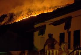 Wildfire Social Media App by Portugal U0027s Worst Wildfire In Decades Kills At Least 64 Lightning