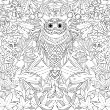 printable 30 coloring pages owl 9173 free complex owl
