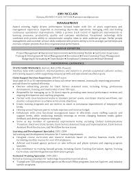 Sample Customer Service Resumes Best Customer Service Resume Objective Examples