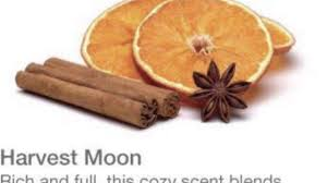 mojilife fall scents yum youtube