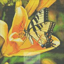 with swallowtail butterfly cross stitch pattern advanced