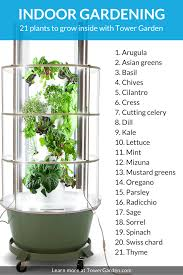 Herbs Indoors by When U201csomething U0027s Growing In The Kitchen U201d Isn U0027t A Bad Thing