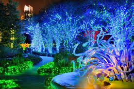 atlanta botanical garden shines u201cgreen u201d this winter with new