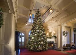 our largest and most spectacular christmas tree at blithewold